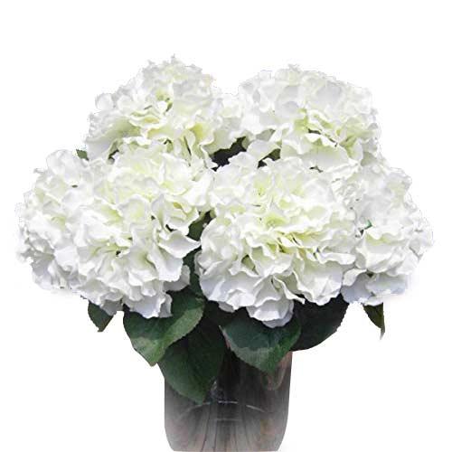 Επιλέξτε μεγαλύτερα άνθη για λιγότερα έξοδα.